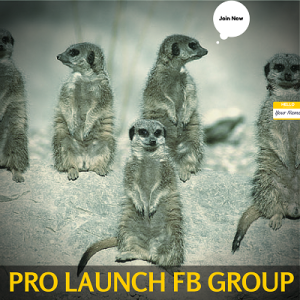 PRO Launch FB Group