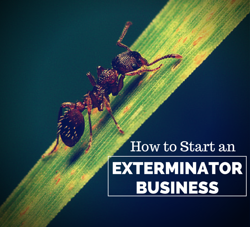 How to Start an Exterminator Business
